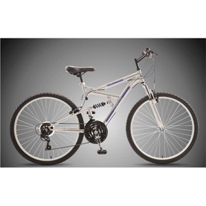 Mountain Bike - Silver